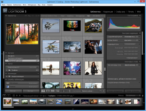 lightroom3.6_1