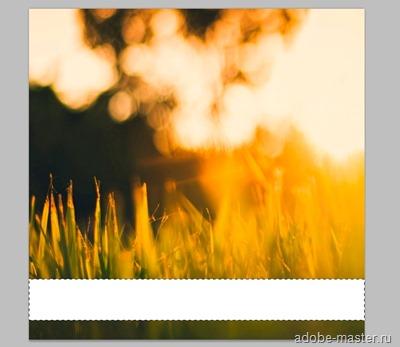 matoviy-fon-dlya-texta2