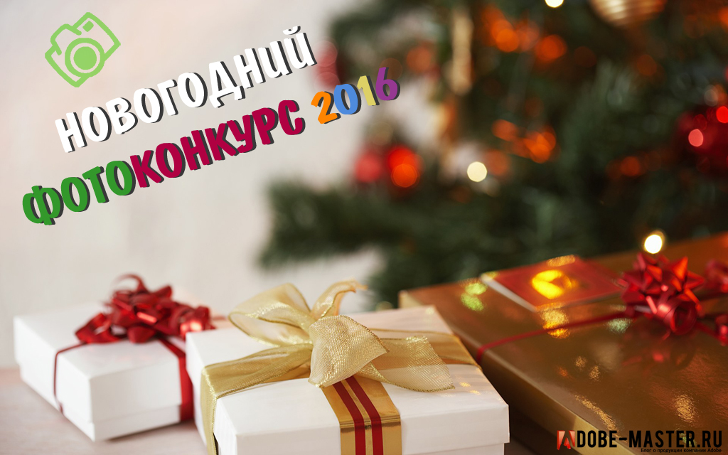 foto-concurs-new-year-2016-1024l