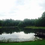 Штат Алабама. Крокодилы и бедность