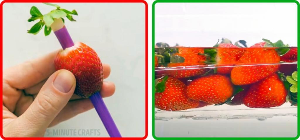 """Результат пошуку зображень за запитом """"Овочі"""""""