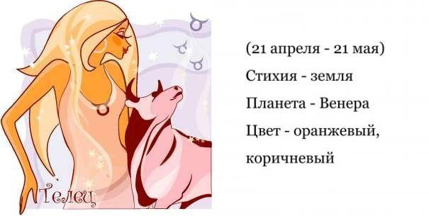 Телец - гороскоп совместимости и характеристика знака зодиака. Мужчина Телец. Женщина Телец