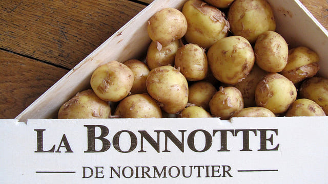 """Результат пошуку зображень за запитом """"La Bonnotte"""""""
