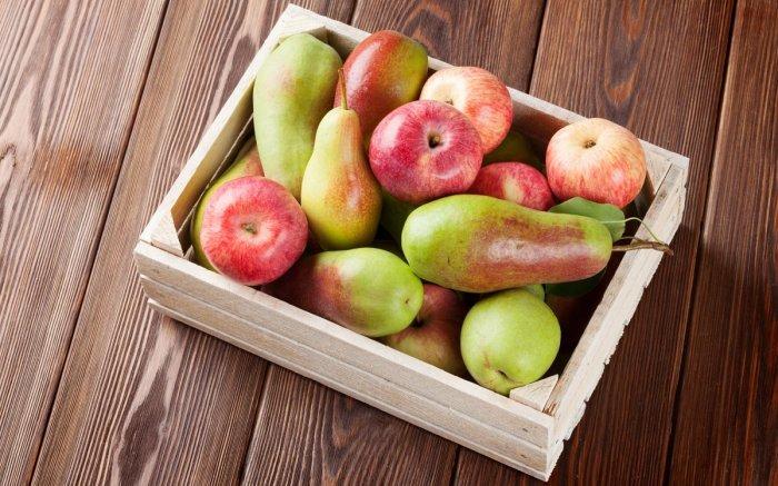 Груши и яблоки. \ Фото: samogon1.ru.